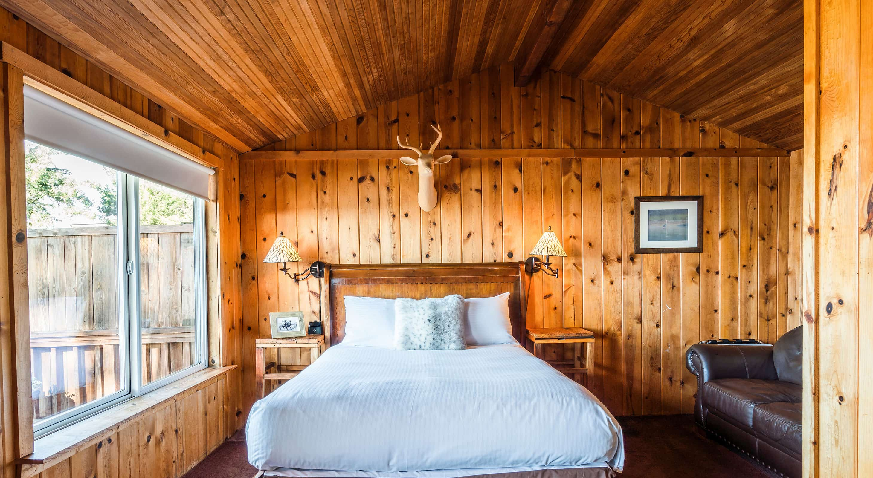 Bed beneath mounted deer head in wood-paneled room in Cabin 2