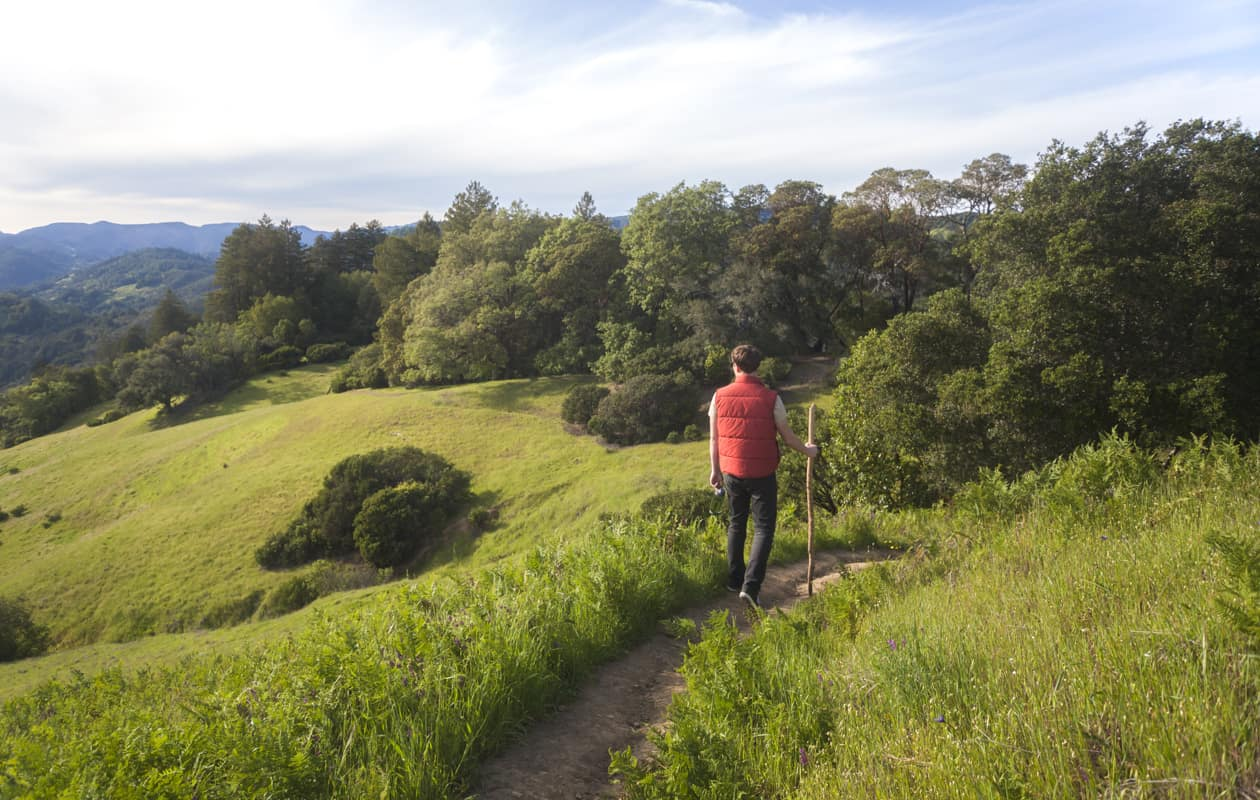 A man hiking on a trail in the hills of Sonoma County California